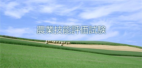 外国人技能評価試験_TOP画像.jpg